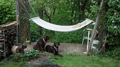 free crochet hammock tutorial