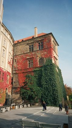 Old Royal Palace, Prague  #Beautiful #Places #Photography  - popculturez.com