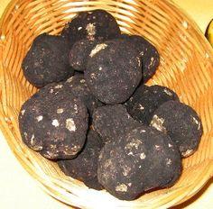 Oregon Black Truffle