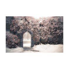 il faut chercher avec le coeur ♥ ❤ liked on Polyvore featuring backgrounds, pictures, photos, images et pics
