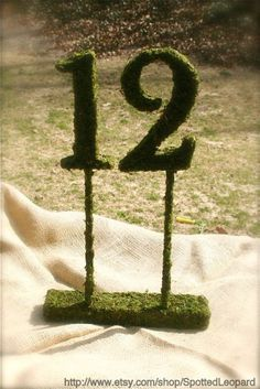 Moss Covered Wedding Reception Table Numbers