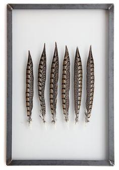 Framed golden Ringneck feathers 60x40 cm www.lola-kate.nl