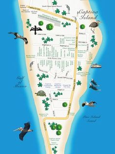 Captiva Island map of restaurants, family friendly resorts and other things to do. Captiva Beach, Captiva Florida, Captiva Island, Old Florida, Visit Florida, Florida Vacation, Florida Travel, Florida Beaches, Clearwater Florida