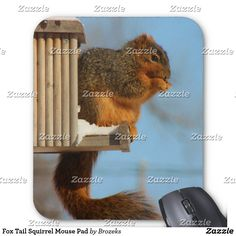 Fox Tail Squirrel Mouse Pad