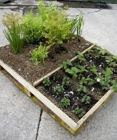 With a little weed mat stapled on the back to hold the soil in place, this is a nifty little project for a mini raised garden bed