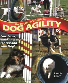 The Beginner's Guide to Dog Agility. Agility is so fun!