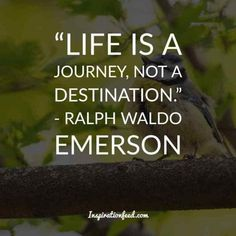 Love Nature Quotes, Mother Nature Quotes, Ralph Waldo Emerson, Famous Quotes, Best Quotes, Quotes About Attitude, Meaningful Quotes, Inspirational Quotes, Emerson Quotes