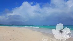 The beautiful beach at Sandals Barbados! #hibiscustravel www.TheCaribbeanSpecialists.com www.hibiscustravel.net