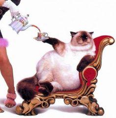 Gato bebiendo té