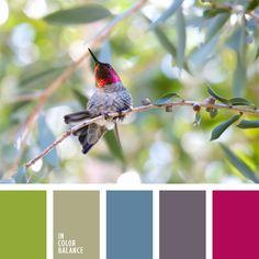 azul celeste, color azul cerúleo, colores de una ave tropical, elección del color, rosado y celeste, selección de colores para un salón, tonos celestes, verde grisáceo, verde lechuga y celeste, verde y verde lechuga, violeta y rosado.