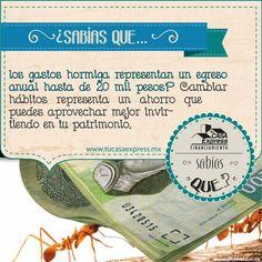 ¿Sabes cuánto dinero pierdes en gastos hormiga?