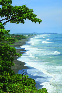 One of hundreds of secluded beaches in Costa Rica on the Pacific Ocean.