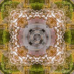 Photo of flamingo theme square abstract