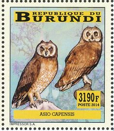 Marsh Owl stamps - mainly images - gallery format