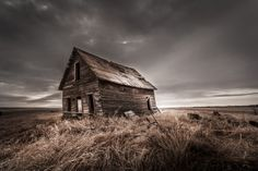 Abandoned building in a spring prairie field