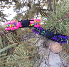 Cat Collar with Kitty Break Away  Clasp 550 Paracord by BrodsParacord on Etsy