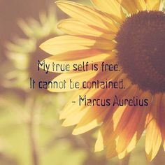 ALWAYS be true to yourself and how you feel. #strong #fearless