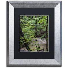 Trademark Fine Art Rainy Day in the Forest Canvas Art by Kurt Shaffer, Black Matte, Silver Frame, Size: 11 x 14, Green