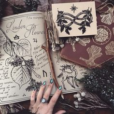 Witchcraft 101: How to grow your own grimoire (or witch's diary)