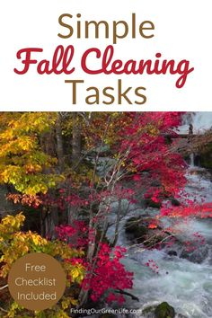 When should you do fall cleanup? What fall cleaning tasks need to be done? Get your fall cleaning done in just 15 minutes per day with this printable fall cleaning checklist. Norwex Cleaning, Diy Cleaning Products, Cleaning Hacks, Fall Cleaning Checklist, Norwex Envirocloth, Mattress Cleaner, Range Hood Vent, Fall Clean Up, Chemical Free Cleaning