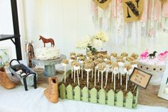 Rustic Birthday Part
