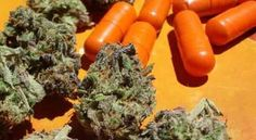 Big Pharma Not Happy: 80% of Cannabis Users Give Up Prescription Drugs Posted on January 11, 2016