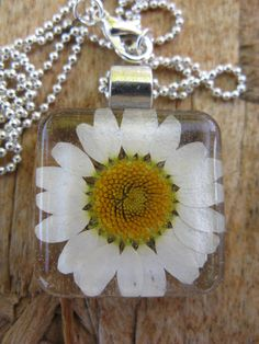 Hey, I found this really awesome Etsy listing at https://www.etsy.com/listing/107149136/daisy-resin-pendant-necklace-real-daisy