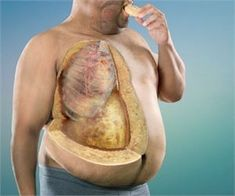 """The difference between belly/visceral and subcutaneous (""""flab"""") . Visceral fat is more vascularized and will usually be accessed first during fasted state. Diet modifications to lose body fat will cause visceral fat loss first. Exercise Fitness, Excercise, Herbalife Nutrition, Fitness Nutrition, Human Body Anatomy, Medical Anatomy, Health Education, Weight Loss Journey, Healthy Weight Loss"""