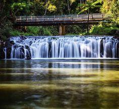 Malanda Falls swimming hole on the Atherton Tablelands near Cairns, Australia. Photo:  MattPetersOz