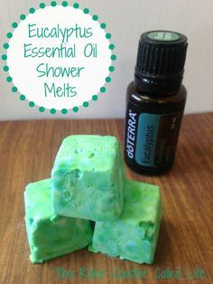 Here is an easy recipe for Eucalyptus Essential Oil Shower Melts to support clear breathing
