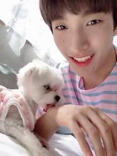 Seventeen Lee Seokmin, Jeonghan Seventeen, Seventeen Memes, Seventeen Debut, Seventeen Wallpapers, Celebrity Wallpapers, Woozi, Wonwoo, Kpop Girl Groups