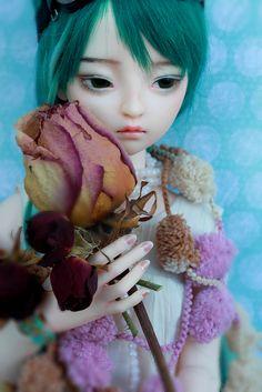 Dollmore Mio