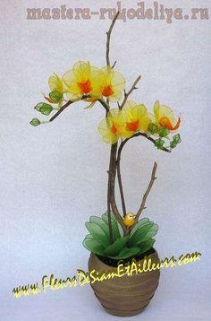 Мастер-класс:Орхидея Фаленопсис из капроновых колготок