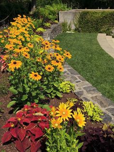 The 25 Easiest Plants to Grow in the Yard Garden Yard Ideas, Easy Garden, Lawn And Garden, Backyard Ideas, Garden Art, Garden Paths, Garden Design, Nice Backyard, Backyard Privacy