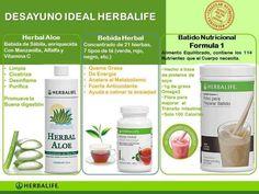 desayuno herbalife - Negócios Herbalife - ADONAIEASSOCIADOS@GMAIL.COM (81) 88189901