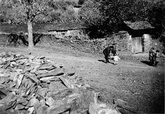 """Casa con """"portalín"""" de acceso en Negueira de Muñiz. Arquivo Ebeling nº 434."""