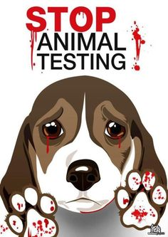 Stop animal testing! Don't support companies that test on animals!
