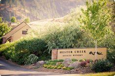 Julia & Dale – luxury vineyard wedding at Vaseux Lake and Hester Creek Winery in Oliver, BC Vineyard Wedding, Luxury