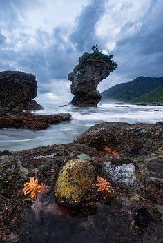 Motukiekie, New Zealand