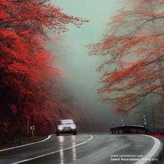 AbbasAbad-KlarDasht, Mazandaran, Iran. Autumn