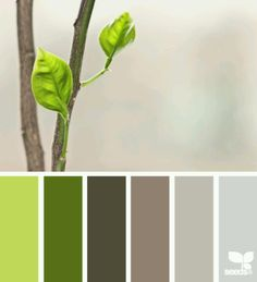 Emerging Colors... What could you do with these colors? There is inspiration everywhere #Janovic