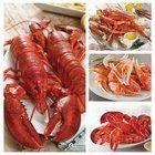 Lobster Gram Hallowe