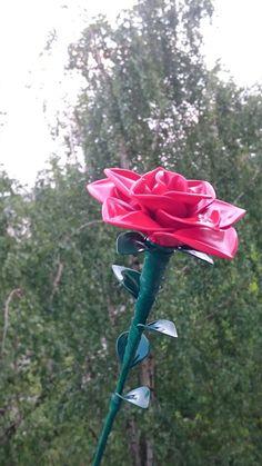 Rose Balloons 🌹🌹🌹