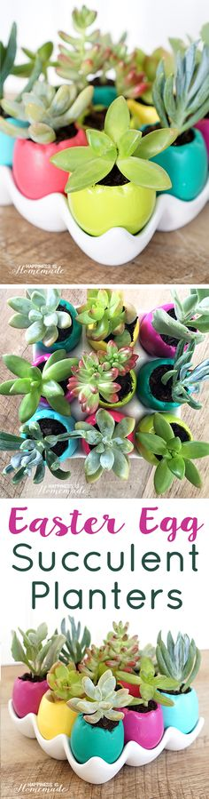 Easter Egg Succulent Planters - super cute, quick & easy spring decor! - Happiness is Homemade