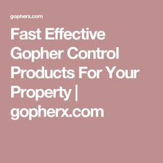 Fast Effective Gopher Control Products For Your Property | gopherx.com