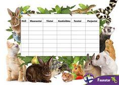 Tulosta eläinaiheinen lukujärjestys | Faunatar