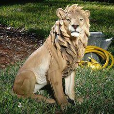 Regal Lion Sculpture Fabulous Lifelike Statue of Animal King Outdoor Ornament Life Size Statues, Lion Design, Animal Statues, Design Poster, Garden Statues, Paint Designs, Oeuvre D'art, Beast, Nature