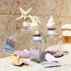 How to Display Seashells | glue seashells to display bottle corks | For the Home