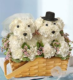 Love You Fur-ever™ - a-DOG-able® arrangement of fresh white carnations, waxflower and variegated pittosporum $79.99
