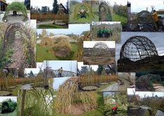 Living Willow Sculpture, via Flickr.
